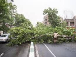 طوفان تهران را با خود برد