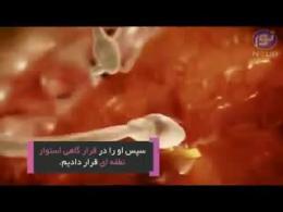 بررسی ادعای قرآن در مورد شکل گیری جنین