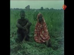 مستند تانزانیا - قسمت هشتم - معرفی کشور تانزانیا در شرق آفریقا از نظر اجتماعی، زیستی و جغرافیایی