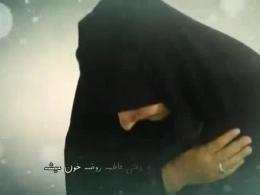 مداحی زائر کربلا از حاج امیر عبّاسی