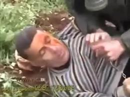 حمله به فلسطینی ها با سگهای وحشی