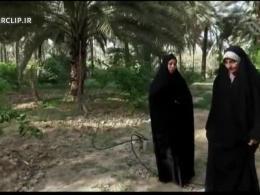 مستند ملازمان حرم - شهید محمد استحکامی