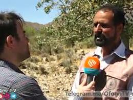 تلاش بچه های اردوهای جهادی برای حفظ گوزن زرد ایرانی
