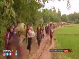 نسل کشی در میانمار و سکوت بهت آور جهانیان
