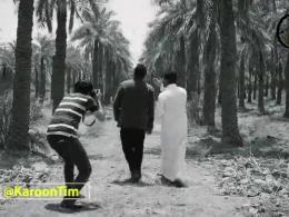 مرگ نخل های آبادان و خرمشهر