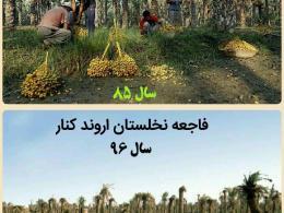 اوضاع کشاورزان آبادانی بعد از گذشت چند ماه !شوری آب