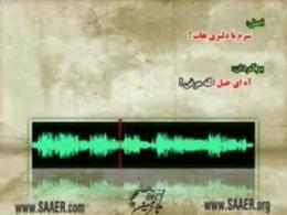 رائفی پور  برگردان و کفرگویی آهنگ های ایرانی و خارجی
