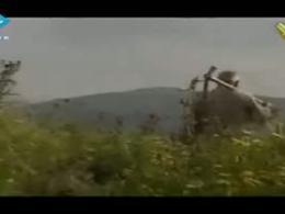 نماهنگ زیبای حزب الله لبنان (لبنان الأخضر)