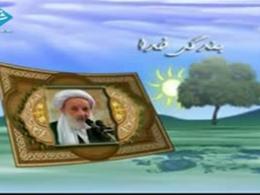 آیت الله مجتهدی تهرانی | بندگی خدا