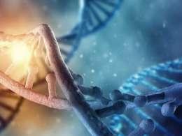دختر رئیس ساواک، مسئول پروژه ژنوم ایرانی در آمریکا!