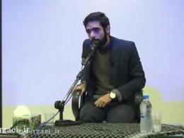 استاد میرزایی - نمایندگان مجلس