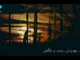 ولادت امام هادی(ع) - فرید صلواتی - علی النقی