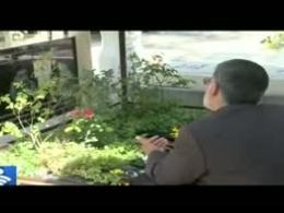 مستند شهید محمد سلگی