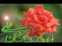 ولادت امام حسن مجتبی (ع) / سید مهدی میرداماد
