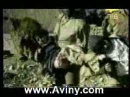 عملیات والفجر 10 نبرد حلبچه