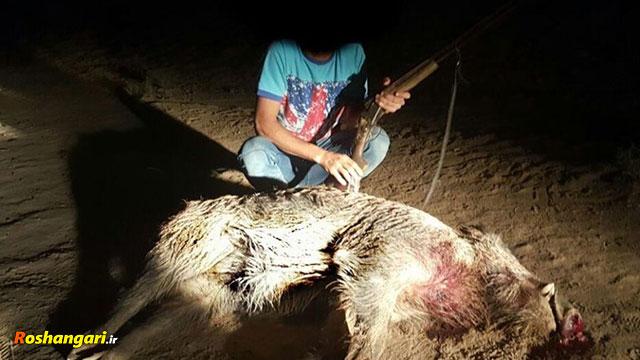 قربانیان جهل!! تکه تکه کردن حیوانات فقط برای خرافات!