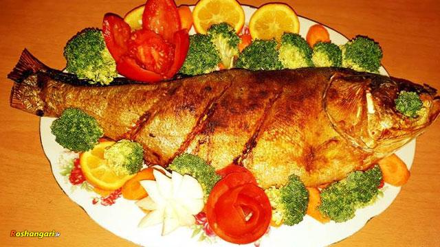 آموزش ماهی شکم پر