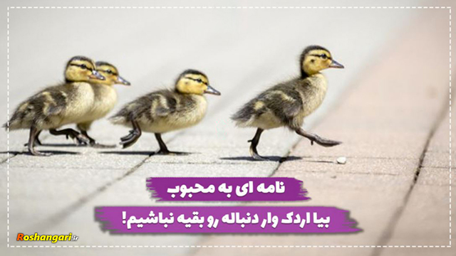 بیا اردک وار دنباله رو بقیه نباشیم