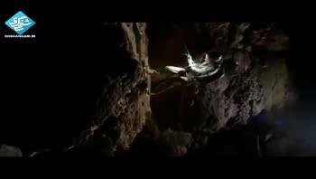 جنگلی اسرارآمیز در قلب بزرگترین غار جهان