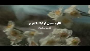 نماهنگ زیبای «عطر نرگس» - با صدای علی لهراسبی