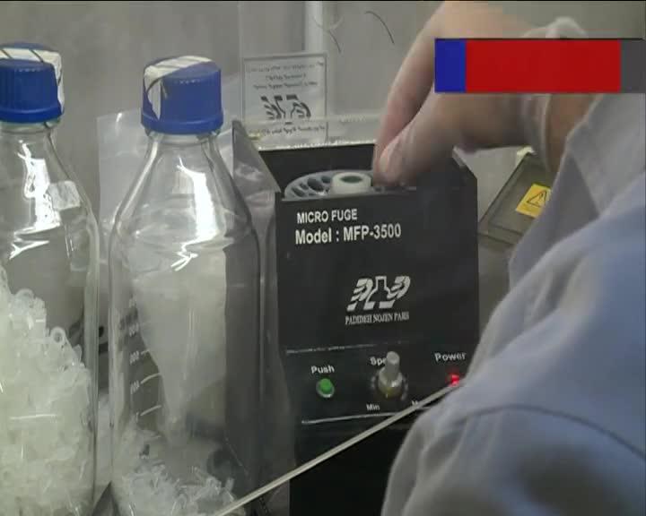 راهی برای درمان سرطان خون در ایران