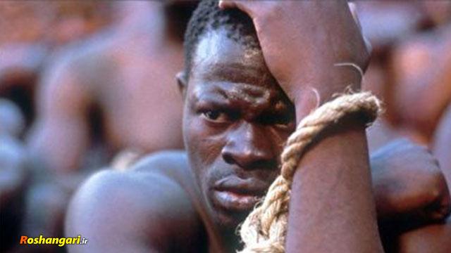 برده داری آمریکایی