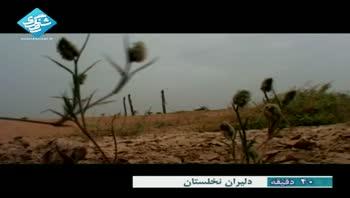 مستند دلیران نخلستان - شهید بهنام محمدی