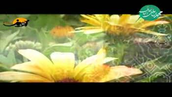 ولادت امام باقر (ع) - محمدرضا طاهری - بیا که لاله بریزیم زیر پای بهار