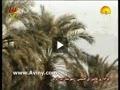 عاشورا در ایران اسلامی (قسمت بیست و هفتم)